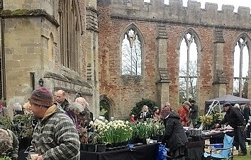 Rare Plant Fair at The Bishops Palace Wells